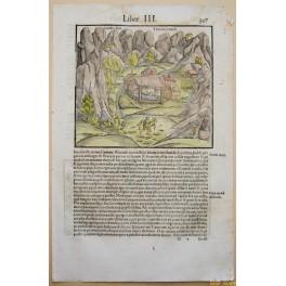 Leuker spring Valais Swiss Old woodcuts Seb. Munster 1550
