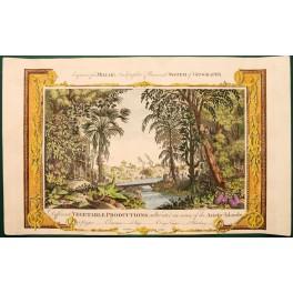 1782 Antique print, Vegetable Productions, Asia/Millar