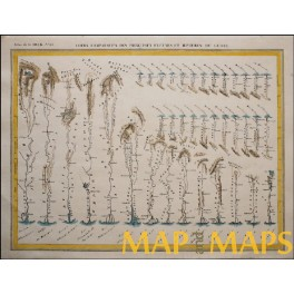 RIVERS OF THE GLOBE - ORIGINAL ANTIQUE MAP – G. HECK 1842