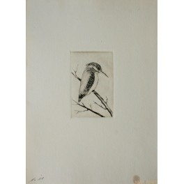 Bird - Paul Joseph Disam - Original etching - 1928