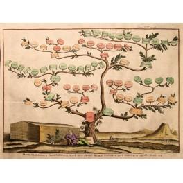 1720 Genealogical Bible Tree of Noah, Noah's Ark.