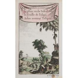 Habits of the Talipo Ceylon old print by Bellin print 1750