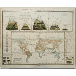 World plant geography, Himalaya old map Perthes 1851