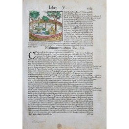Mahumetes from Cosmographia by Seb. Munster c. 1550