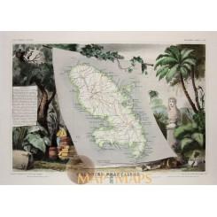 Martinique Caribbean Antique map Levasseur 1858