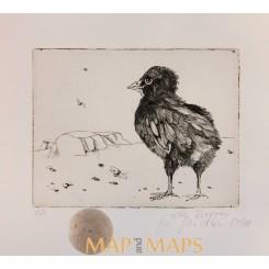 Chick bird etching 8/20 German artist Diepen 68