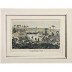South Africa Zulu War Antique print Cetewayo Treasures 1879