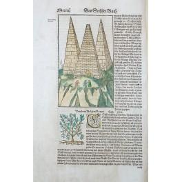Egypt Pyramids antique German leaf rare woodcut Munster 1570